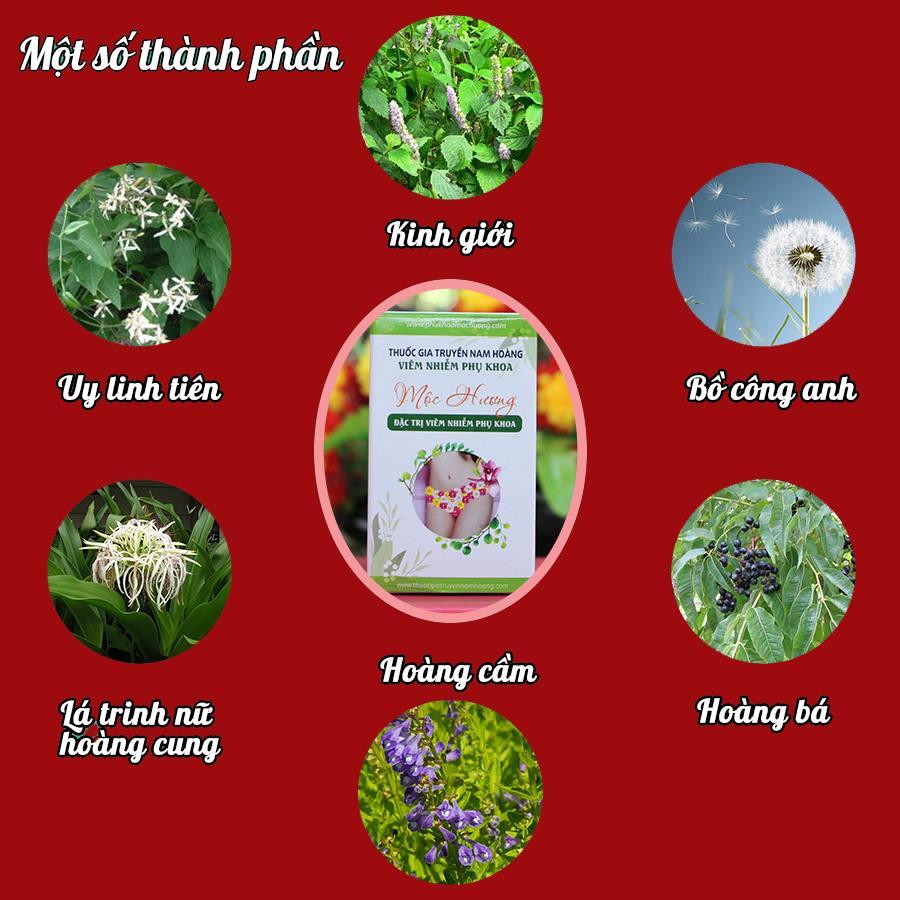 Thành phần chính thuốc trị viêm nhiễm phụ khoa thảo dược Mộc Hương