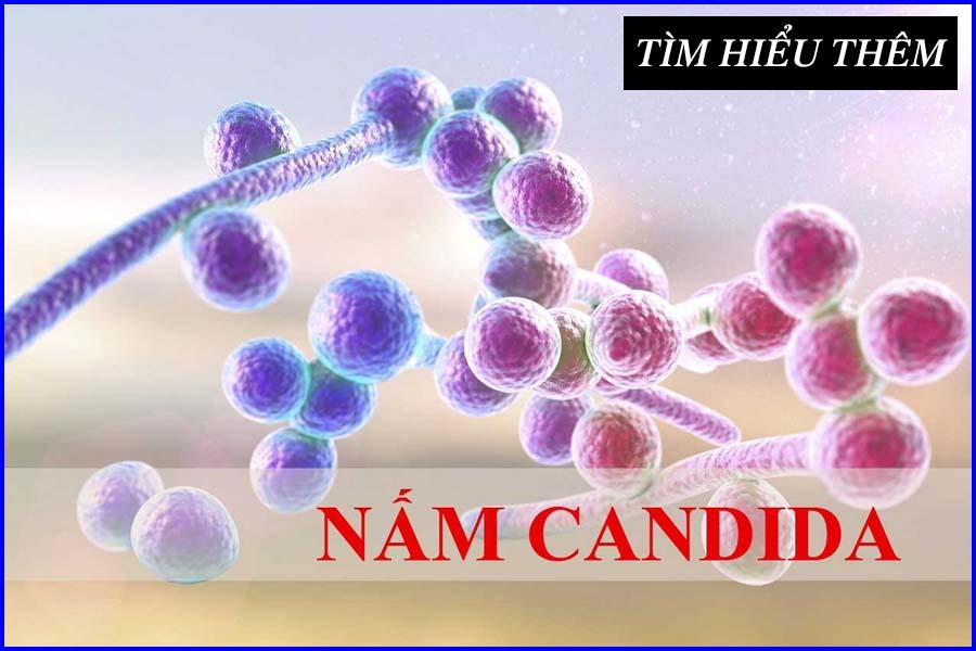 Viêm nấm Candida