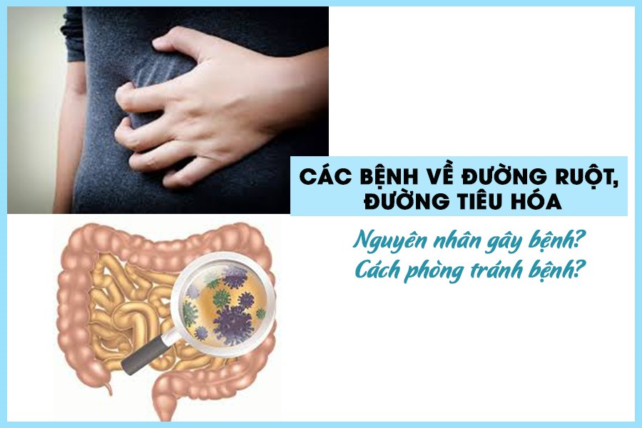 Bệnh về đường ruột là bệnh lý phổ biến