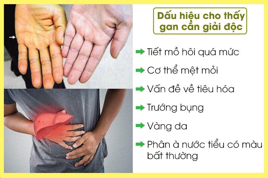 Dấu hiệu cho thấy gan cần giải độc