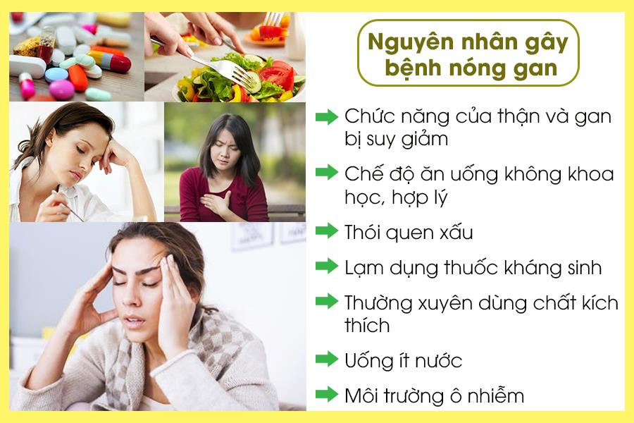 Nguyên nhân bệnh nóng gan