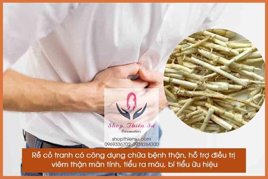 Cây thuốc chữa bệnh thận rễ cỏ tranh
