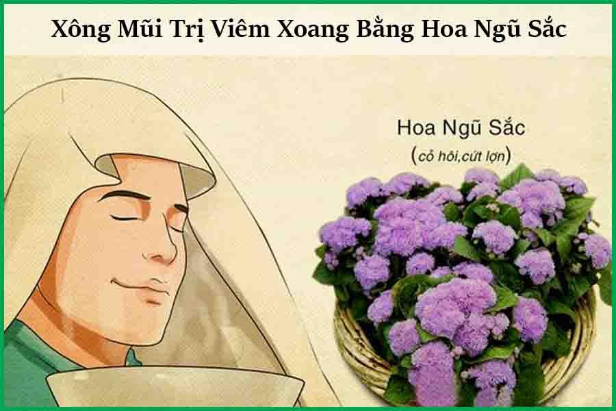 Xông mũi trị viêm xoang bằng hoa ngũ sắc